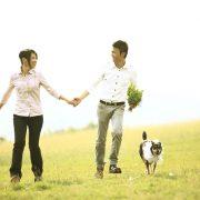 結婚相談所と結婚情報サービスの違いのタイトル画像