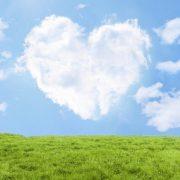 恋せよ若者!大人もね!|仙台の結婚相談所『ステラ結婚情報センター』のタイトル画像
