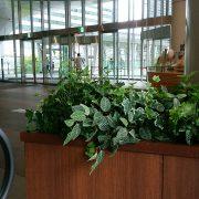 品川駅のタリーズでお見合前のひととき。のタイトル画像