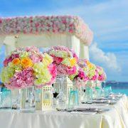 ★成婚報告★「一点の曇りもなく晴れ晴れとした気持ちで結婚できました」のタイトル画像