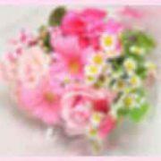 ★婚活ひと言: 美人OBさんから嬉しいメールを頂きました★のタイトル画像