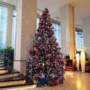 ★クリスマスだけでなく年始を感じさせる飾りつけも出現!★のタイトル画像