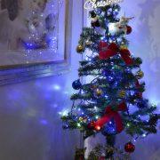 クリスマスまで1週間♪のタイトル画像