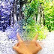 お見合いとは【3】 ~お見合いの大原則のタイトル画像